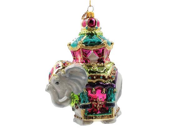Elefante indiano / Indian elephant