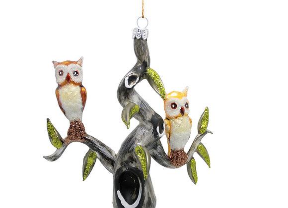 Gufi su albero / Owl on tree