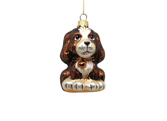 Cagnolino / Funny dog