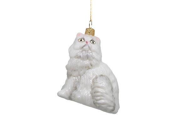 Gatto Persiano / Persian Cat