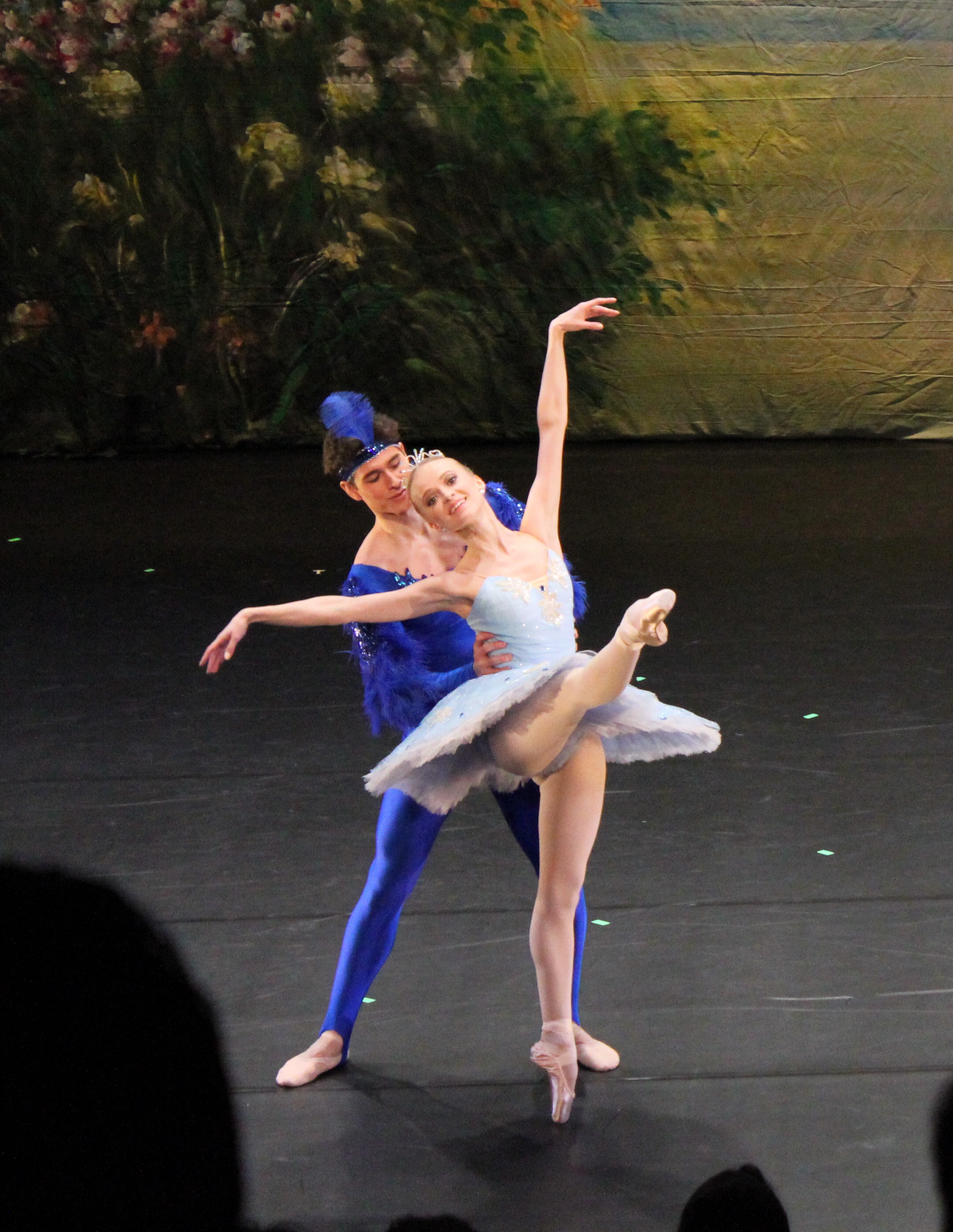 Bluebird Pas de Deux