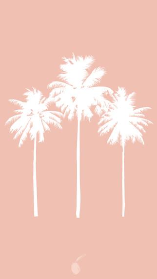 PalmTrees_ PB-01.jpg
