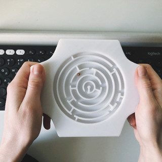 3d printed maze toy