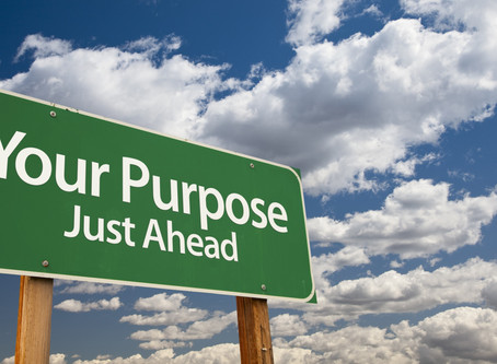 Why Follow Your Purpose?