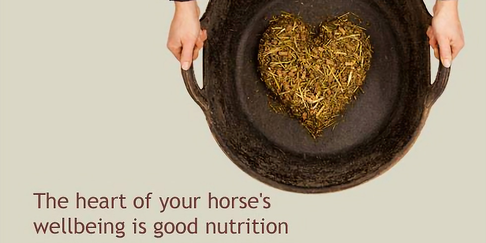 Intro to Equine Nutrition & Supplementation