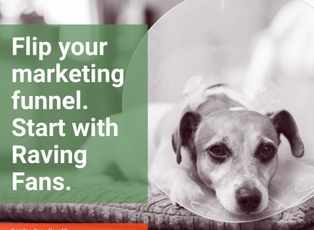 SAVE TIME & MONEY IN YOUR BUSINESS: Focus on your raving fans