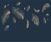 Papier peint noir plumes.png