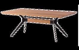 Table basse bois noir fine.png