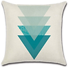 Coussin 1 (1).png