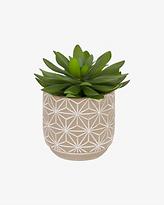 Plante artificielle beige.png