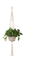 Plante suspendue macramé.png