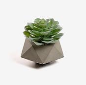 Plante artificielle béton.png