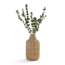 Vase rotin et plante.jpg