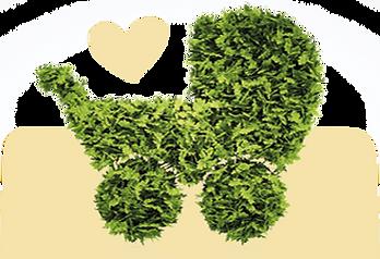 babycrea-ecologie-poussette-moutarde.png