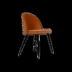 Chaise écureuil.png