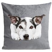 Coussin chien gris.jpg