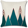 Coussin 2 (1).png