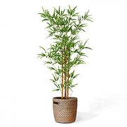 Bambou artificiel (1).jpg