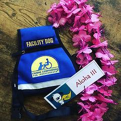 Aloha Facility.jpg
