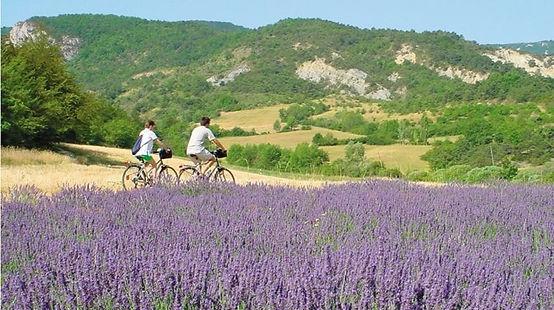 Cycling.jpeg