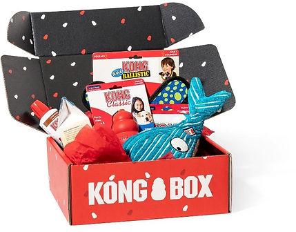 kong box.jpg