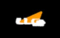 LLG GmbH | Light League Germany Logo