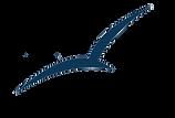 NBC Logo Blue.png