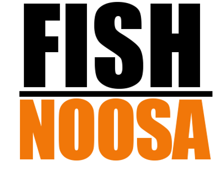 Fish Noosa