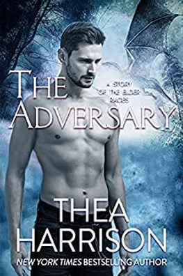 The Adversary.jpg