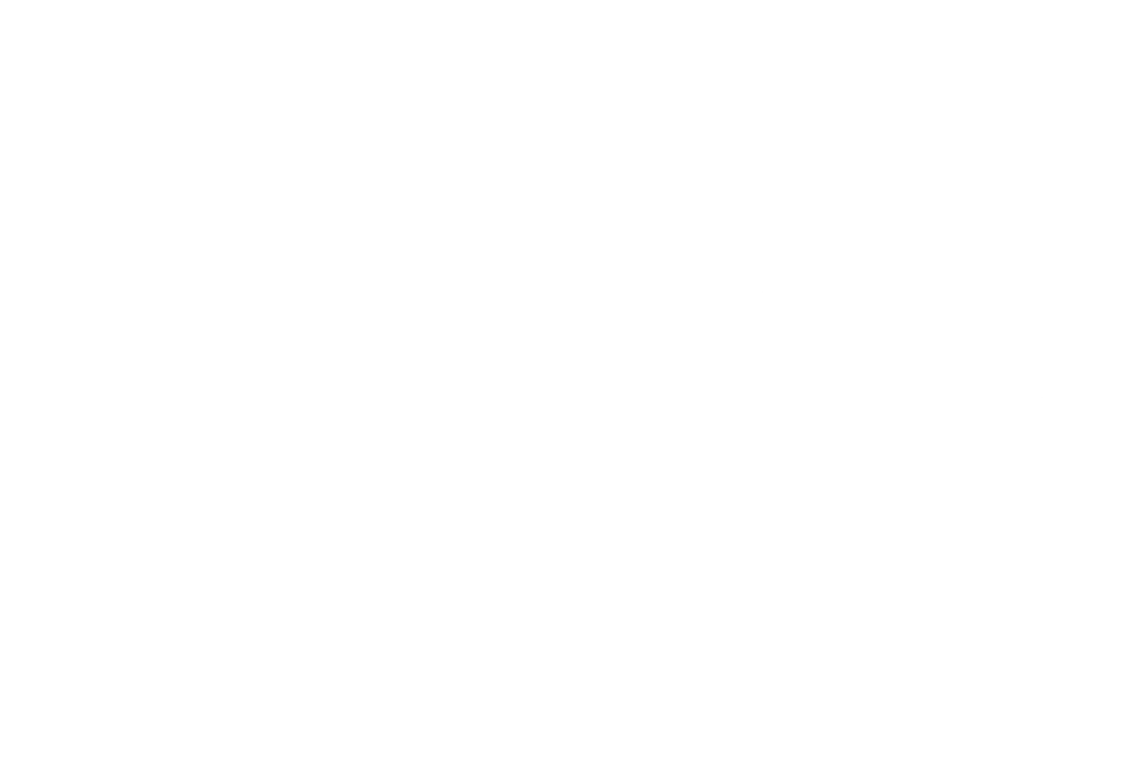 first data.png