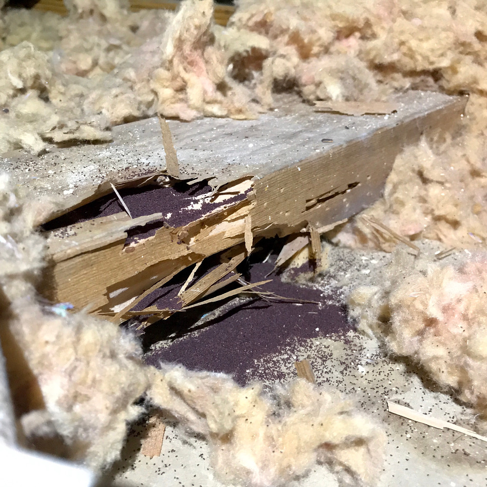 Drywood Termite damage in the attic