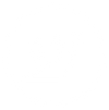 Delivery-icon-white.png