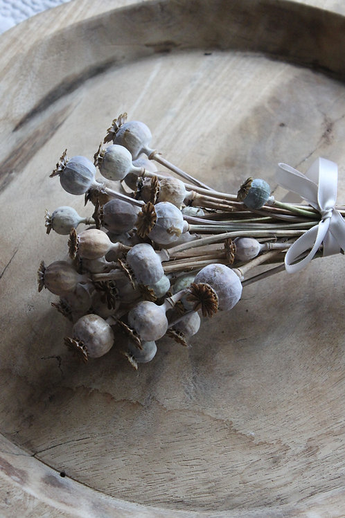 Poppy Seed Heads  (Small Bunch)