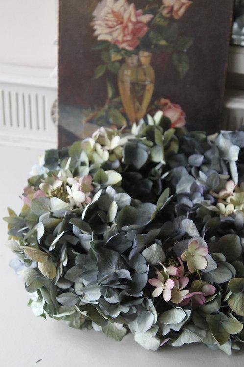 Blue Hydrangea Bloomer (Medium)