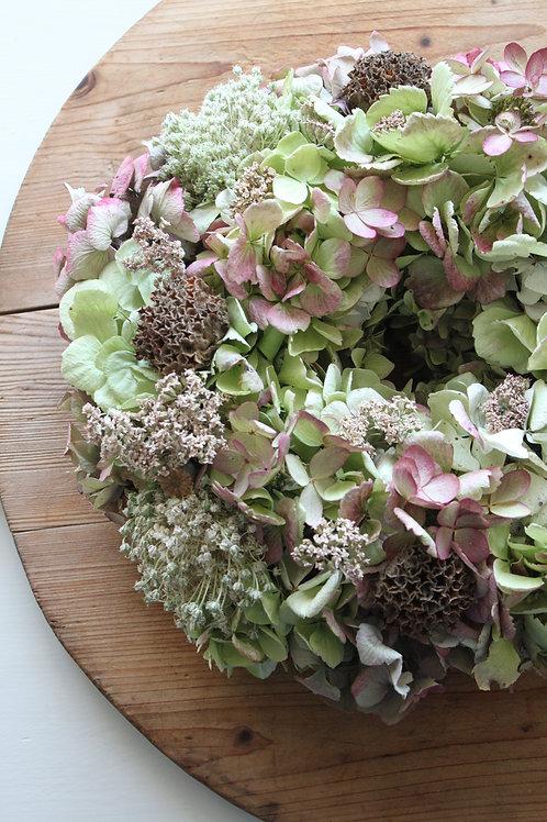 Phlomis, Allium, Achillea & Hydrangea Bloomer