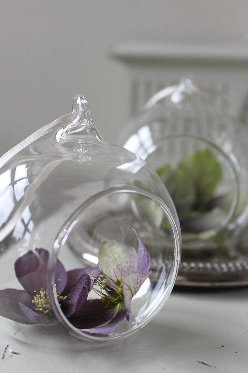 Hellebore Glass Hanging Dome