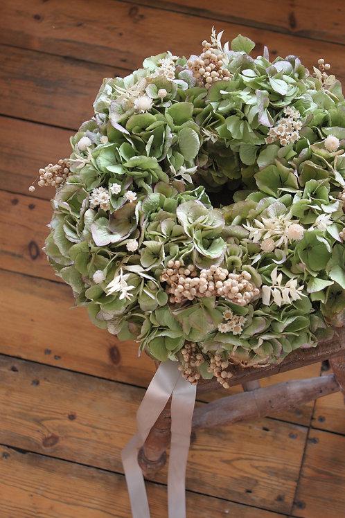 Ivory Pepper Berry Hydrangea Bloomer