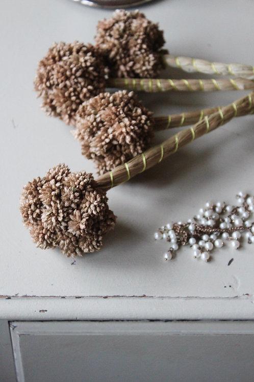 Grass Lollipops