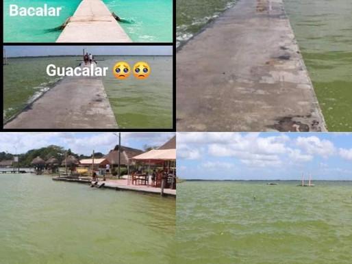 KKLAR PUEBLO TRAGICO #MURIO LA LAGUNA DE LOS 7 COLORES.  #mexicomagico ⚠️⚠️⚠️⚠️