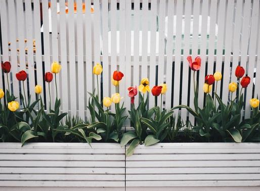 Boundaries: Good Fences make good relationships