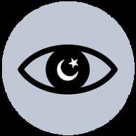 MINIEYE night vision.png
