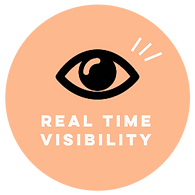 MINIEYE REAL TIME VIEW.png