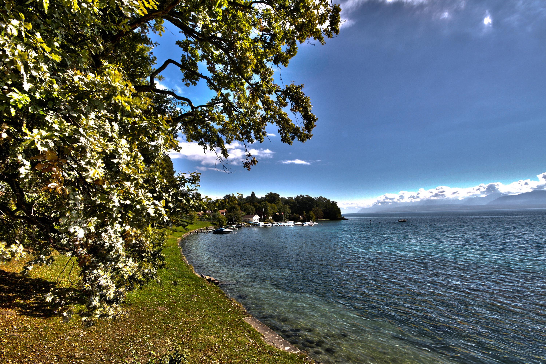 Clinique La Ligniere Au bord du lac, le port