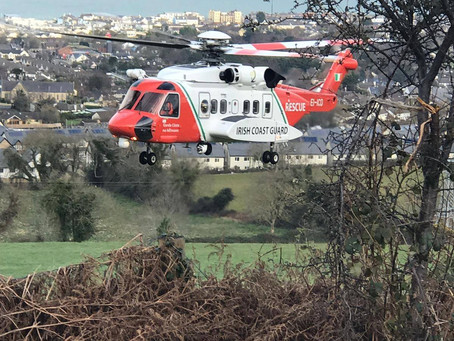 Callout 24 - 18th March 2019 - Greystones