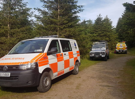 Callout 47 - 22nd June 2019 - Crone Wood