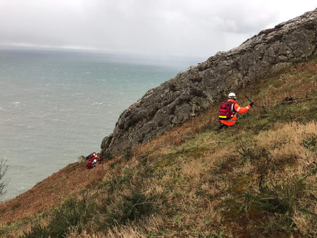 Callout 10 - 31st January 2019 - Bray Head