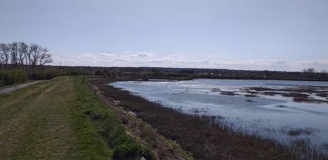 beautiful walk at Riverside Country Park, lifted my spirits.