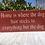 Thumbnail: Home is Where the Dog Hair Sticks..