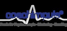 coachimpuls logo 2021.png