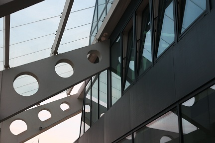 regenerated structure's detail